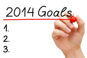 2014 Goals and Themes